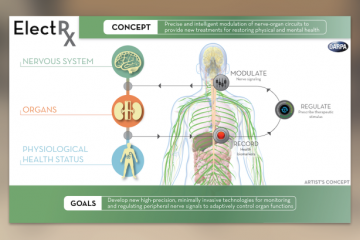 Self Healing Implants | In Compliance Magazine