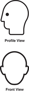Figure 2: New ISO head shape templates depict a general, rounded head form.