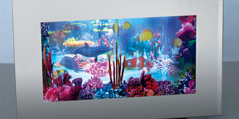 Recalled Aquarium Lamps